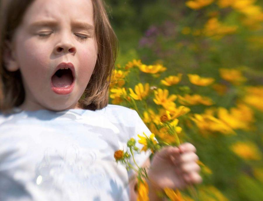 b_900_900_16777215_00_images_allergia-e1412786204419.jpg